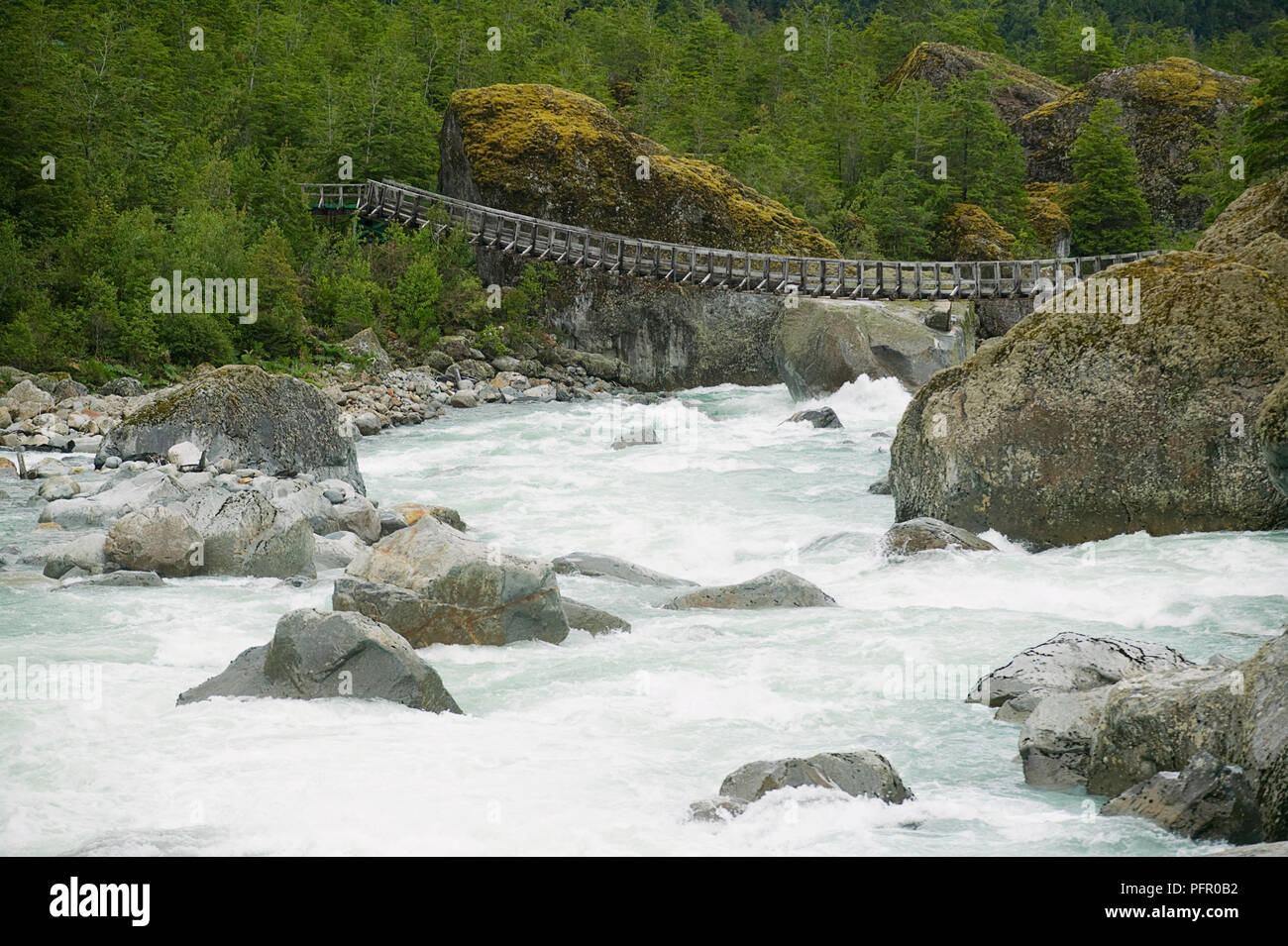 Chile, Patagonia, Queulat National Park, Ventisquero Colgante waterfall, wooden swing bridge across river - Stock Image