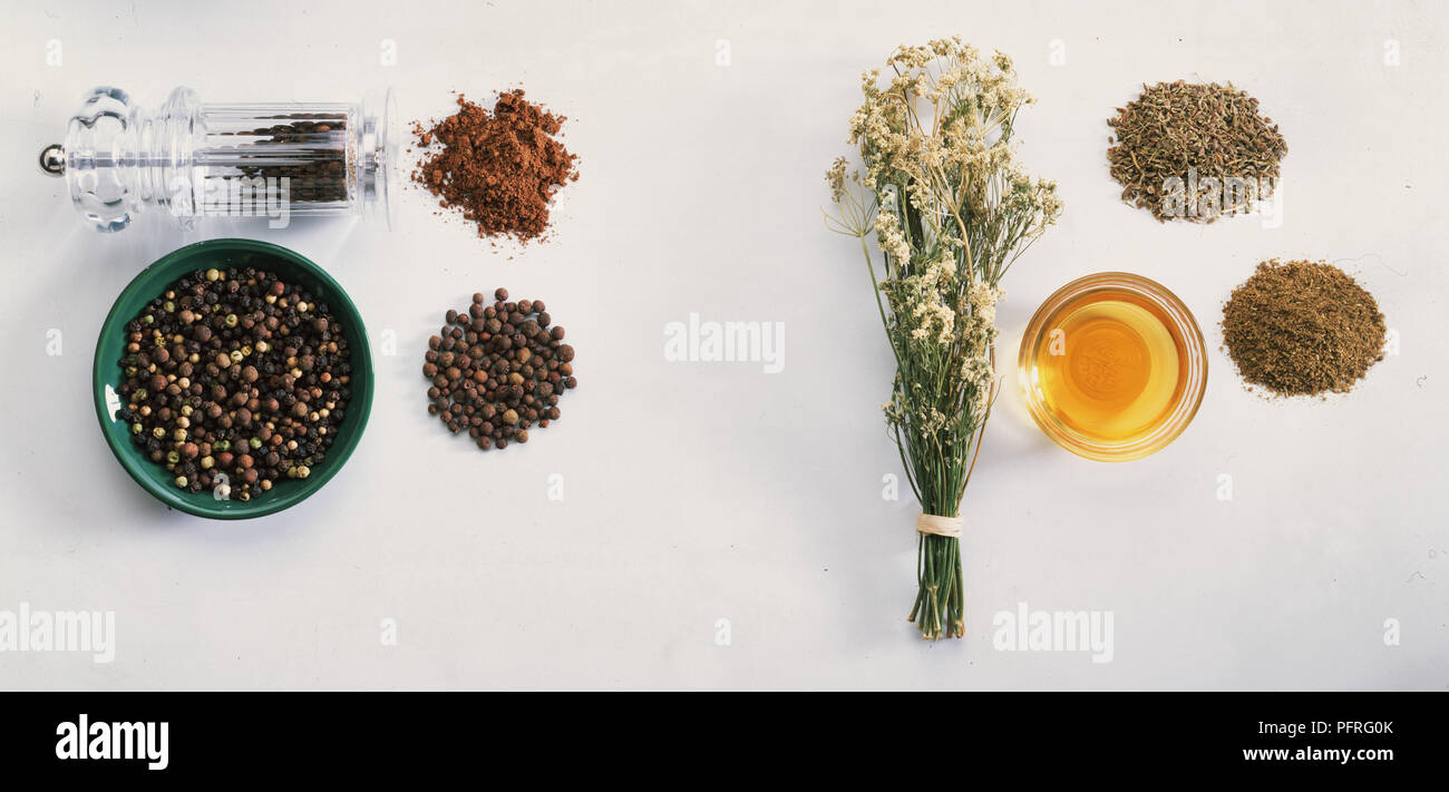 Allspice and Anise - Stock Image