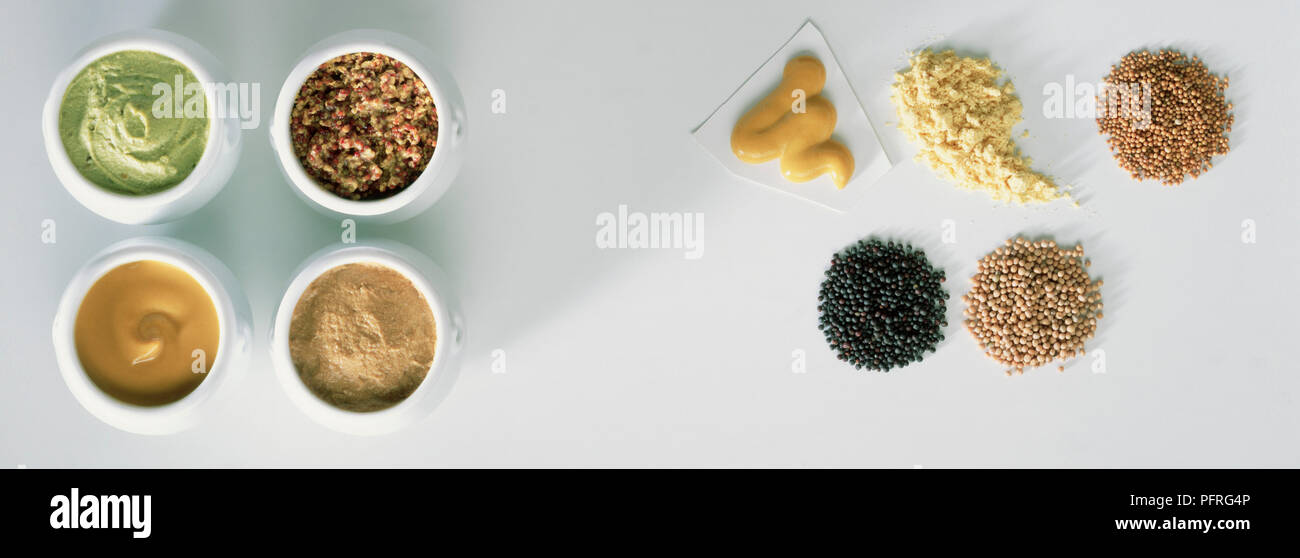 Various Forms of Mustard - Stock Image