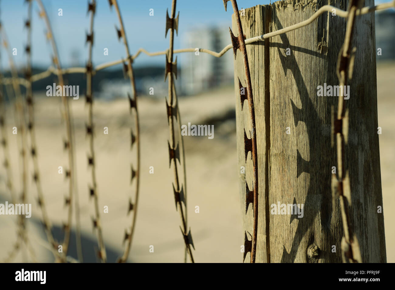 Close-up, detail, weathered rusting concertina barbed wire fence, construction site, barbs casting shadow, wooden fence post, abstract, background - Stock Image