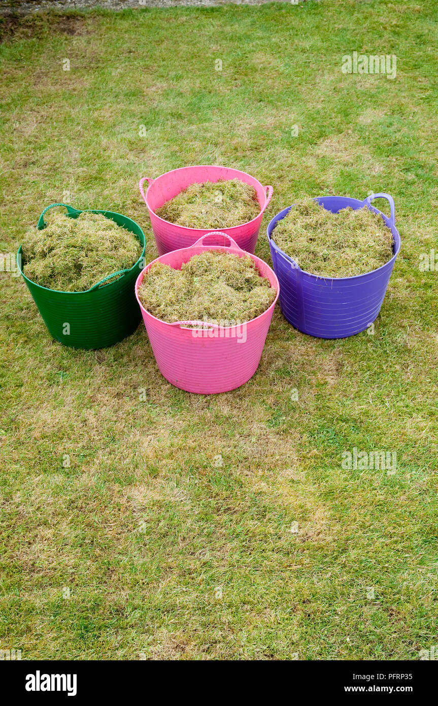 Lawn clippings in four large plastic baskets - Stock Image