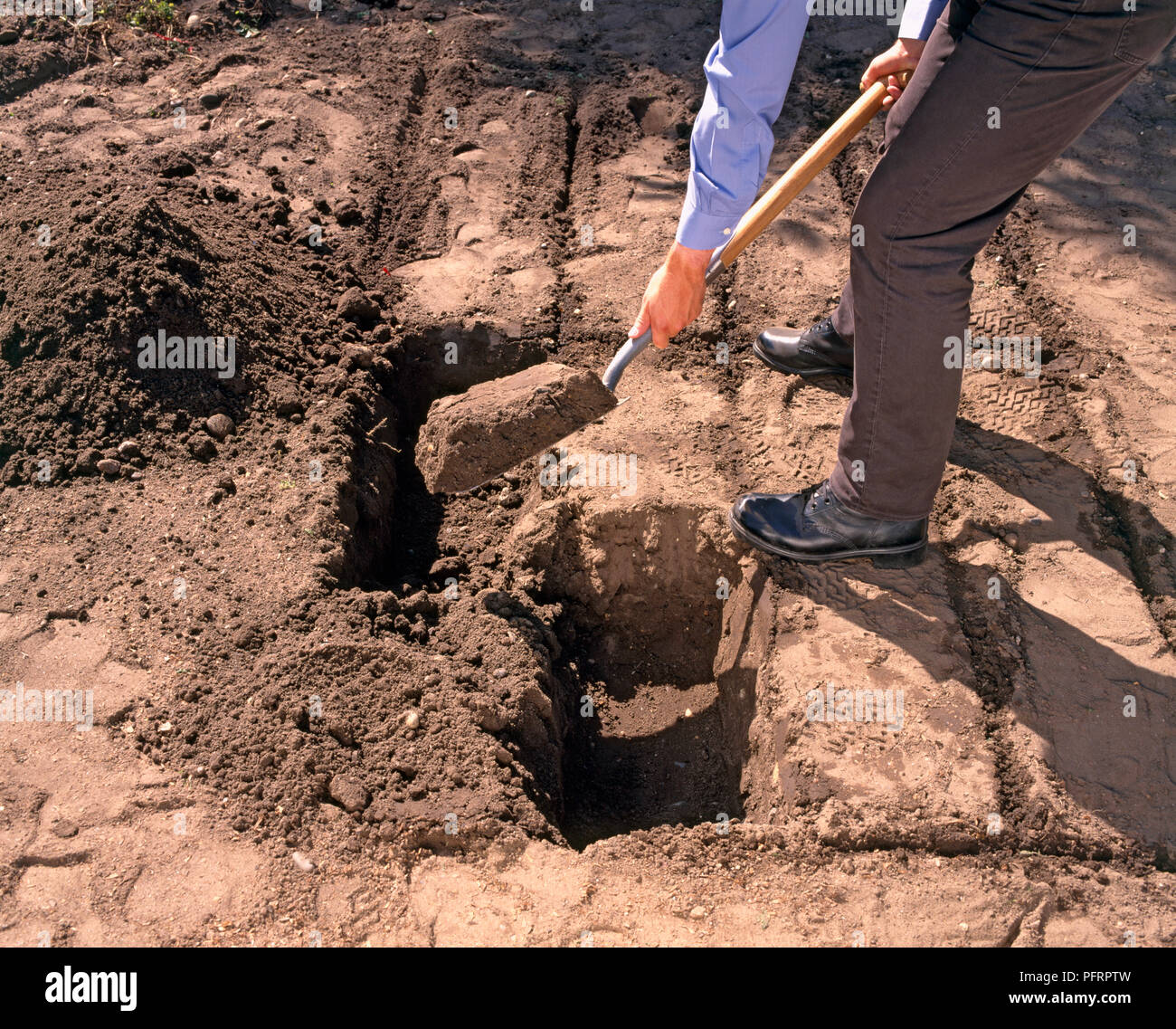 Digging Trench Garden Stock Photos & Digging Trench Garden