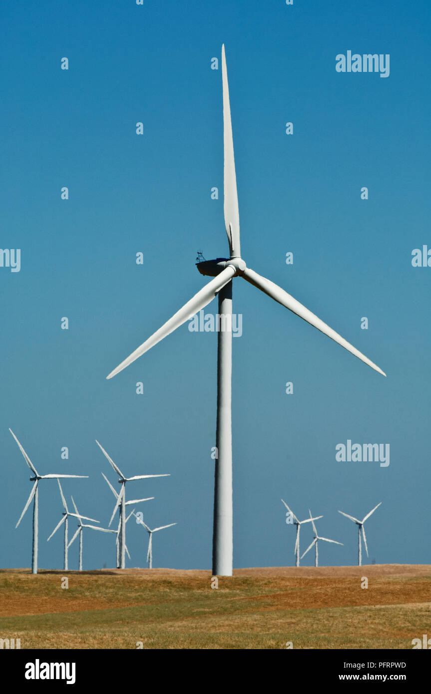 USA, California, Sacramento Delta, Montezuma Hills, Wind Turbines on 21st century windfarm - Stock Image