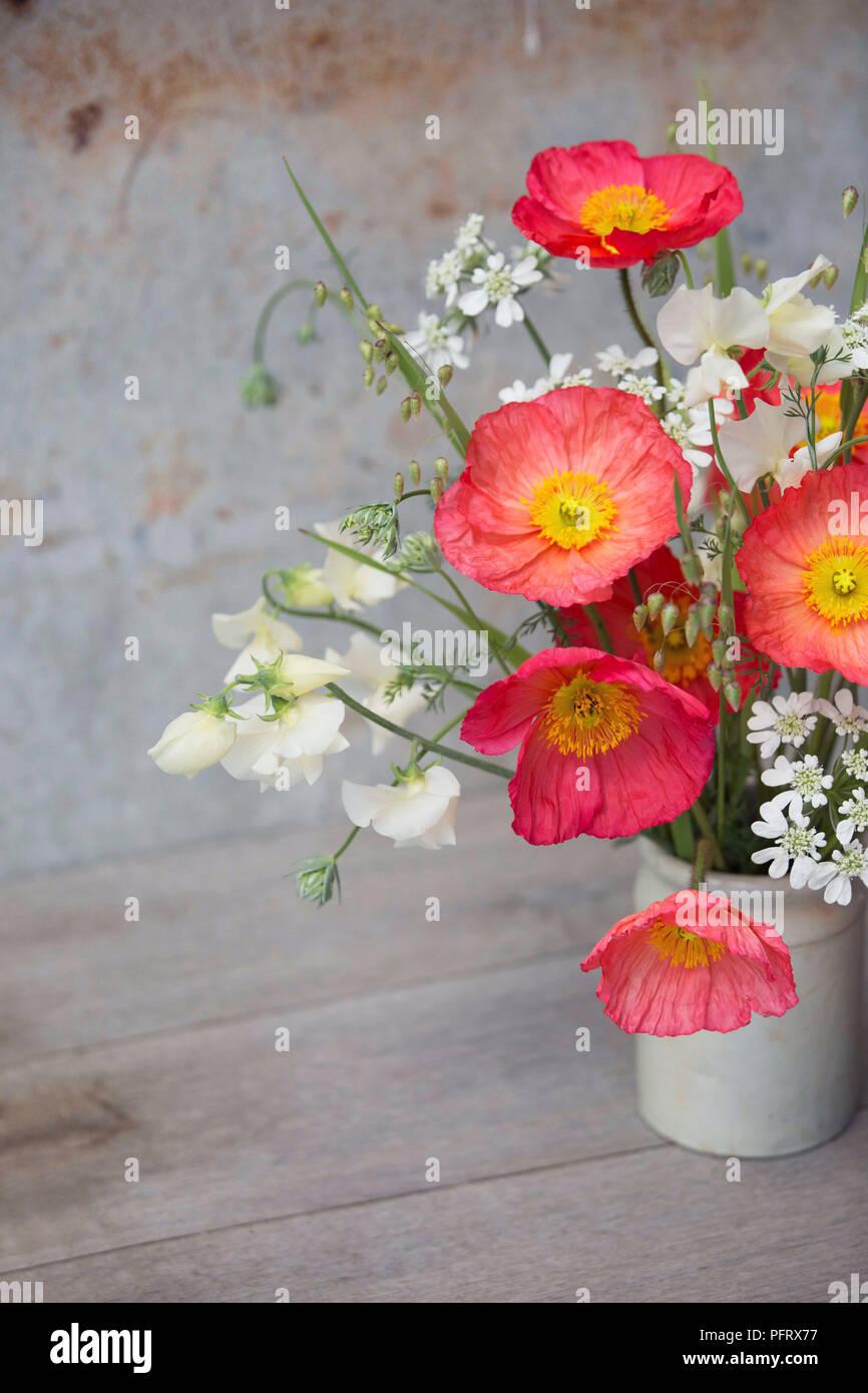 Icelandic poppy arrangement Stock Photo