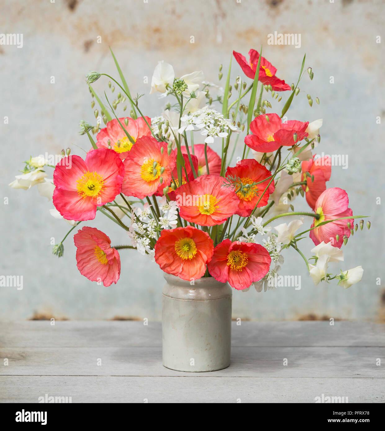 Poppy flower arrangement stock photos poppy flower arrangement icelandic poppy arrangement stock image mightylinksfo