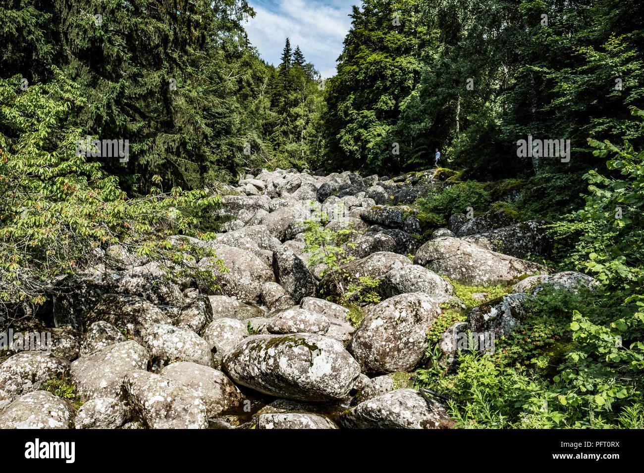 Goldener Steinfluß bei Sofia in Bulgarien - Stock Image