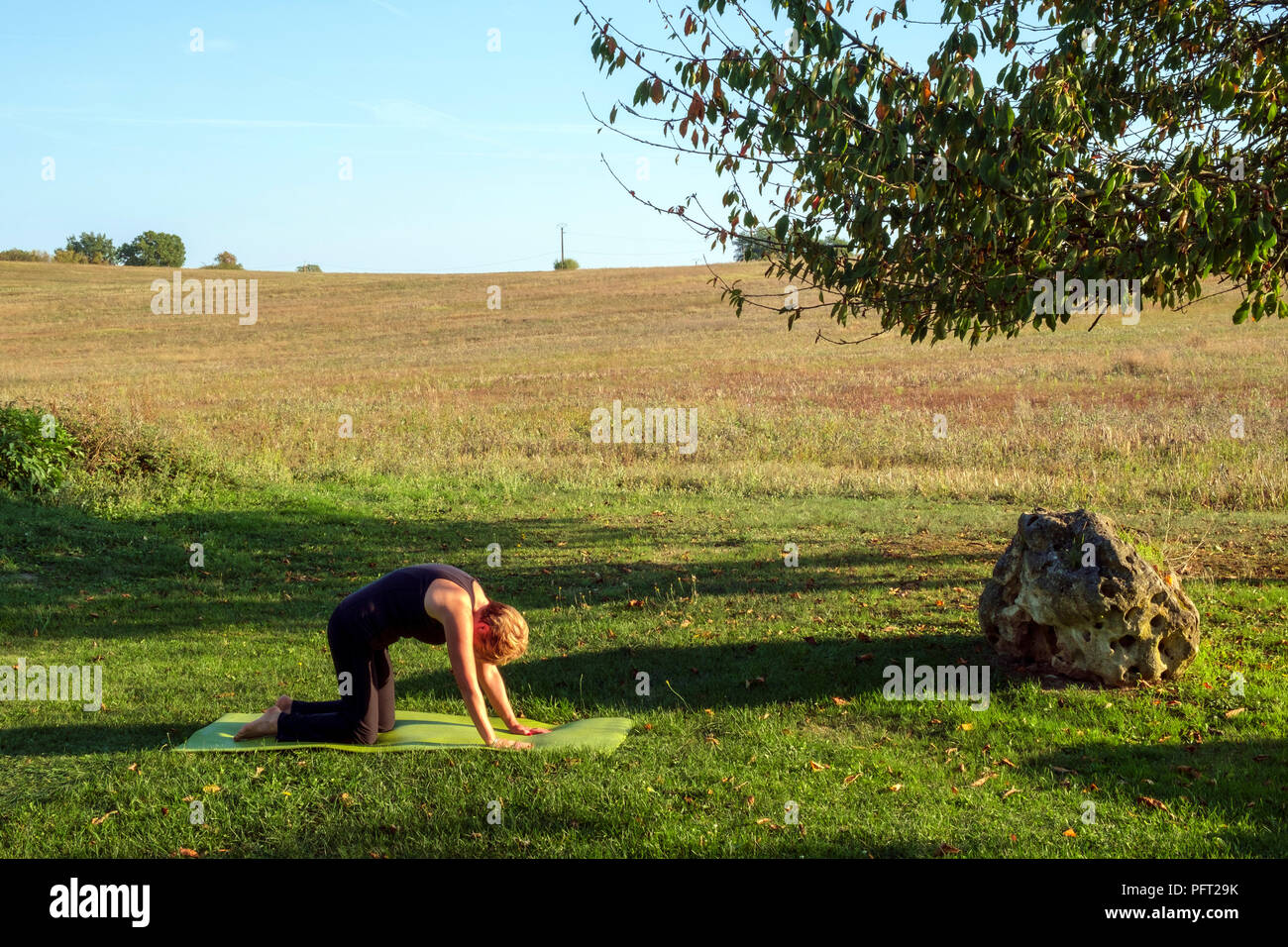 Surrounded by idyllic rural French countryside a mature woman practises her Hatha Yoga positions in beautiful autumn sunshine. The Cat pose. - Stock Image