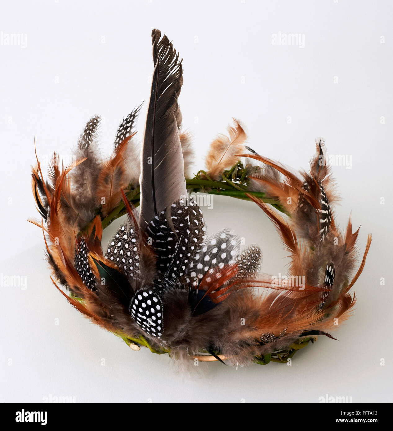 Feather crown hair accessory - Stock Image