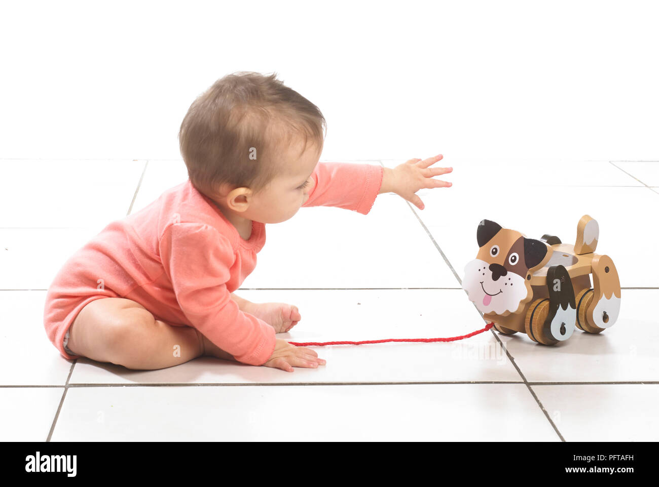 Girl sitting playing with pull along dog, 8 months - Stock Image