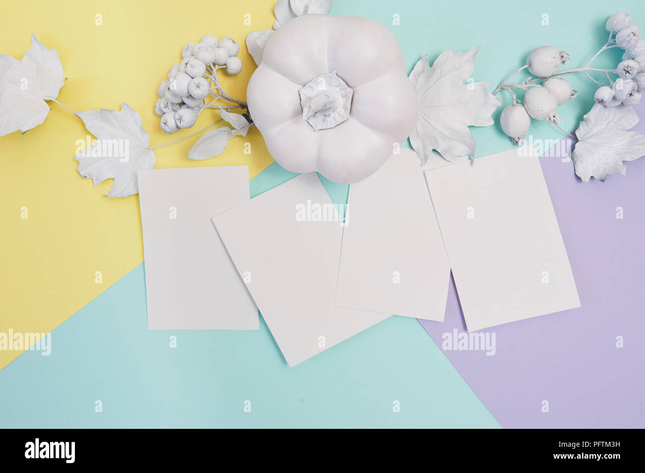 Pumpkin Berries And Leaves With White Frame Mockup On A Multicolor