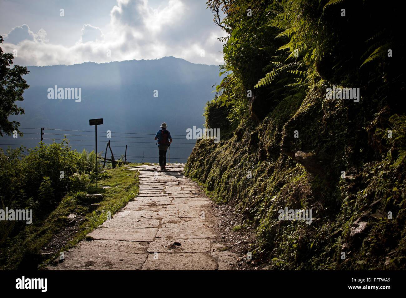 Staircase from  Ghandruk to Syauli Bazar. Annapurna trek. Nepal - Stock Image