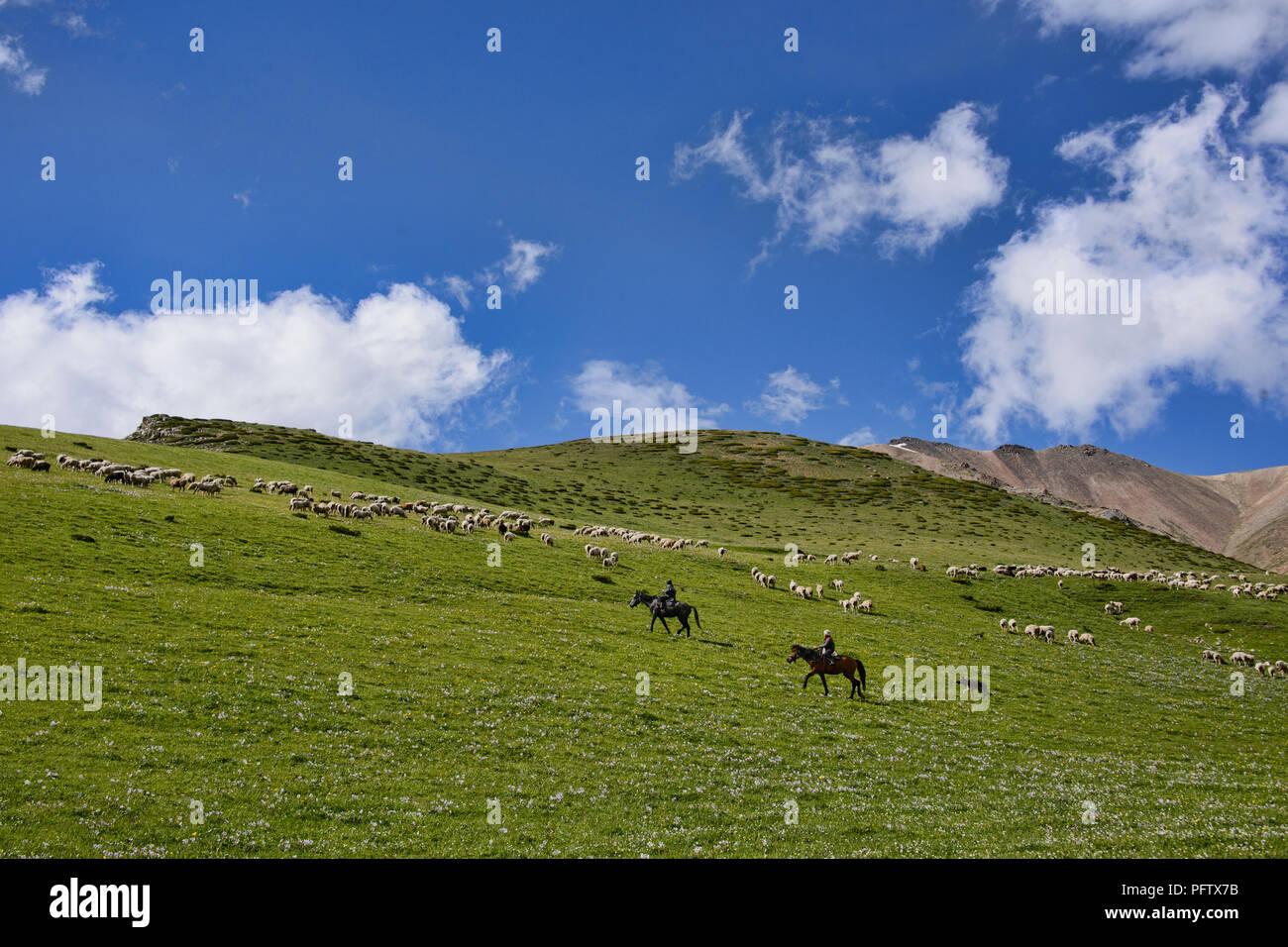 Kyrgyz horserider, Jyrgalan Valley, Kygyzstan Stock Photo