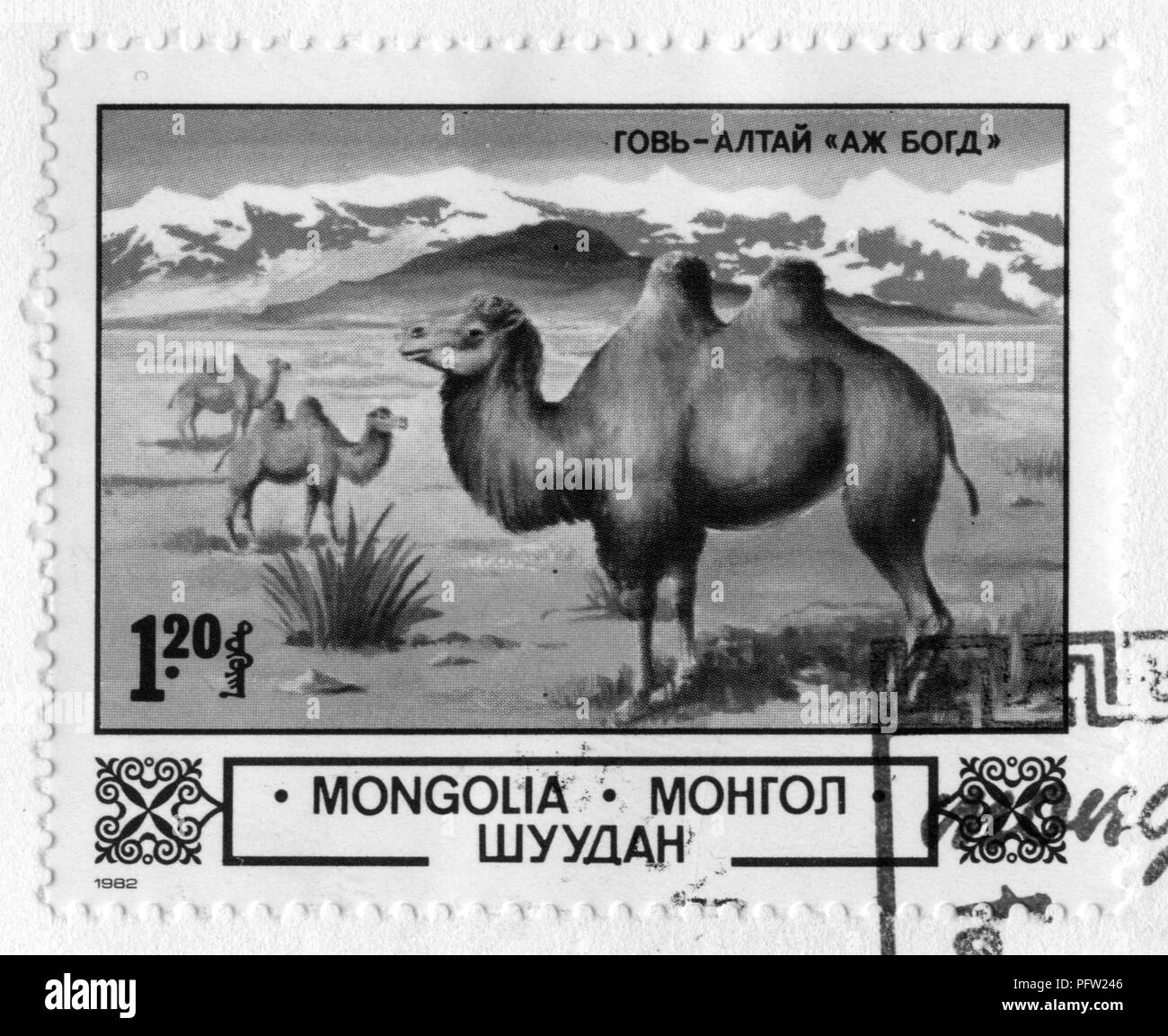 Stamp print in Mongolia - Stock Image