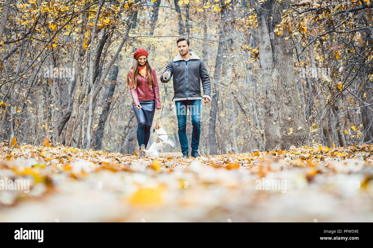 Young couple walking with their dog in a colorful autumn forest - Stock Image