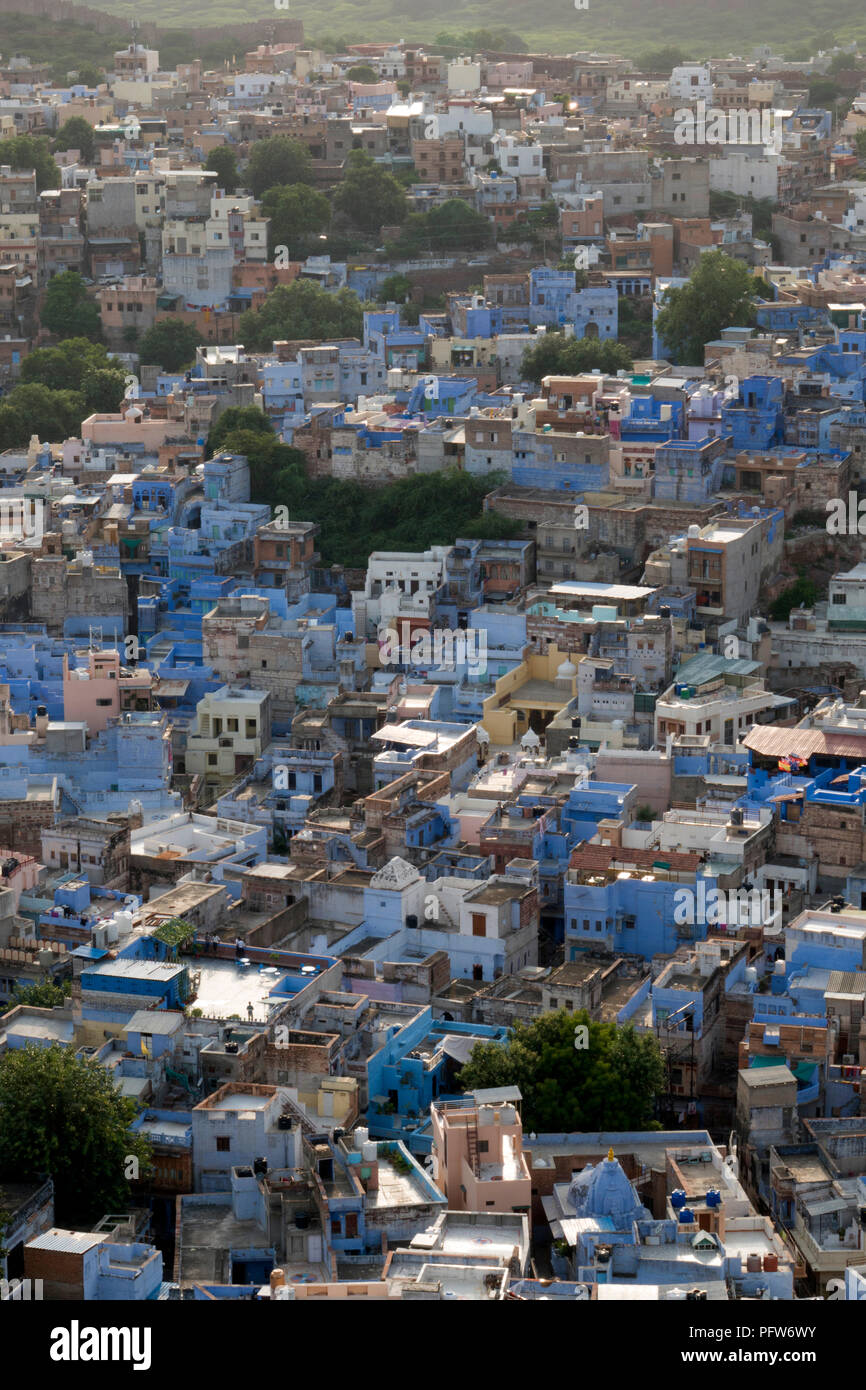 View of the blue city in Jodhpur, Rajasthan, India - Stock Image
