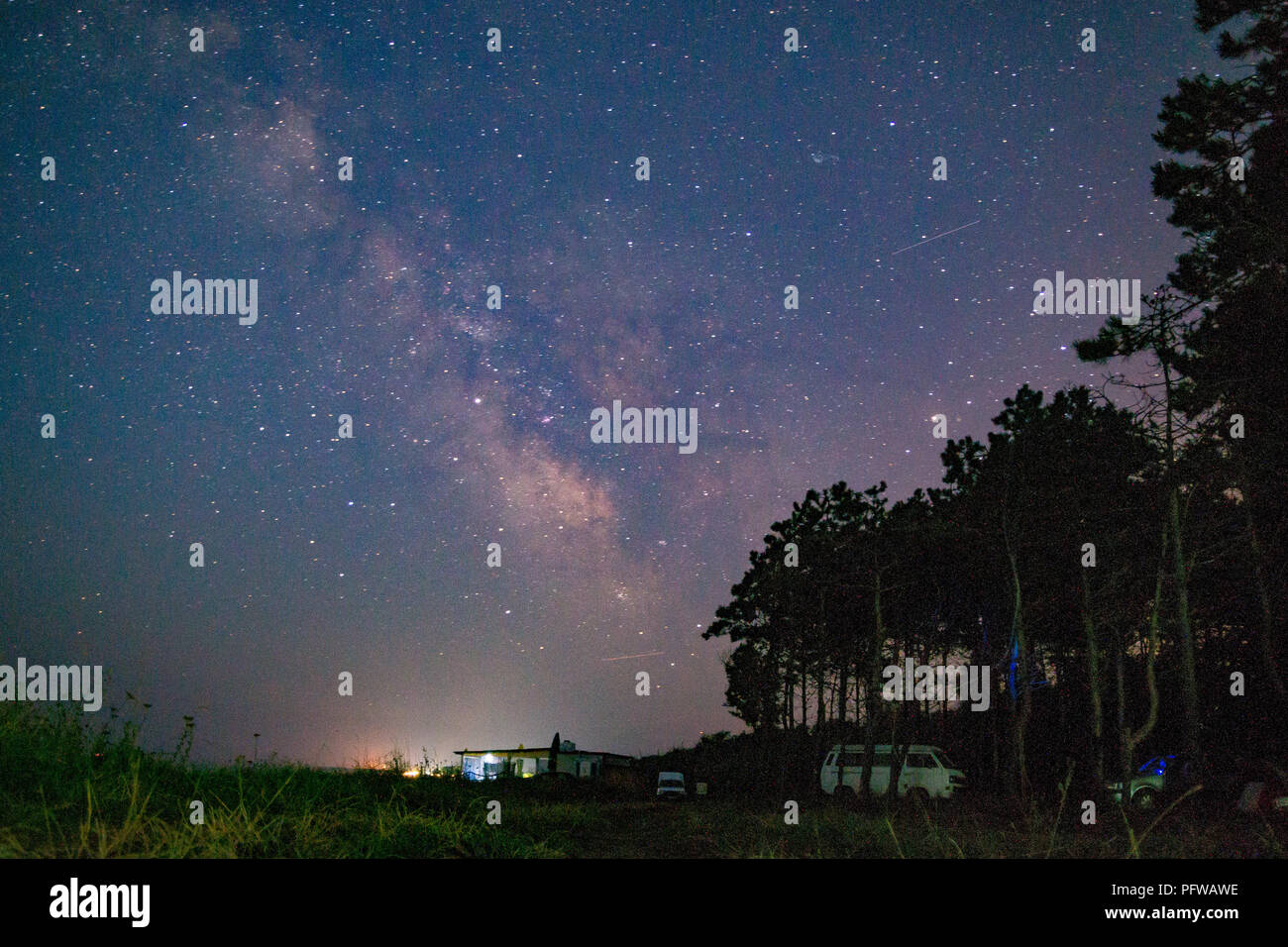 Camp forrest with the Milky Way at night - Stock Image