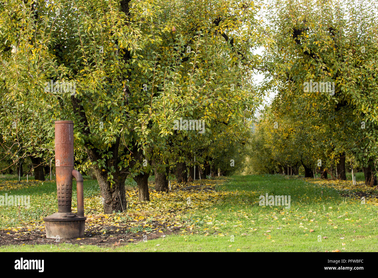 Hood River, Oregon, USA.  A smudge pot (also known as a choofa or orchard heater), an oil-burning device used to prevent frost on fruit trees - Stock Image