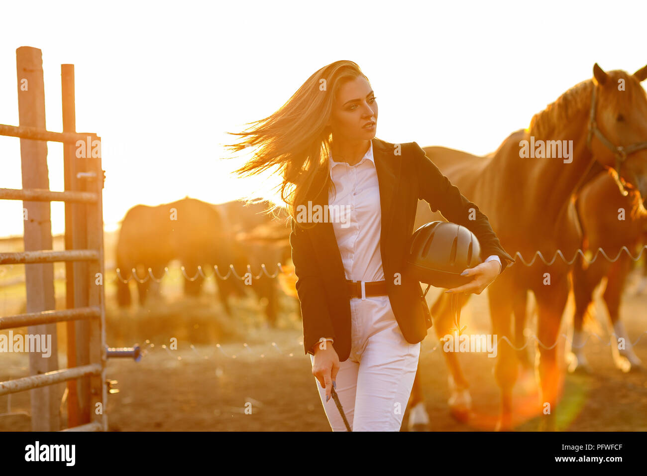 portrait of elegant rider woman with whip stands against the backdrop of horses at sunset. soft light Stock Photo