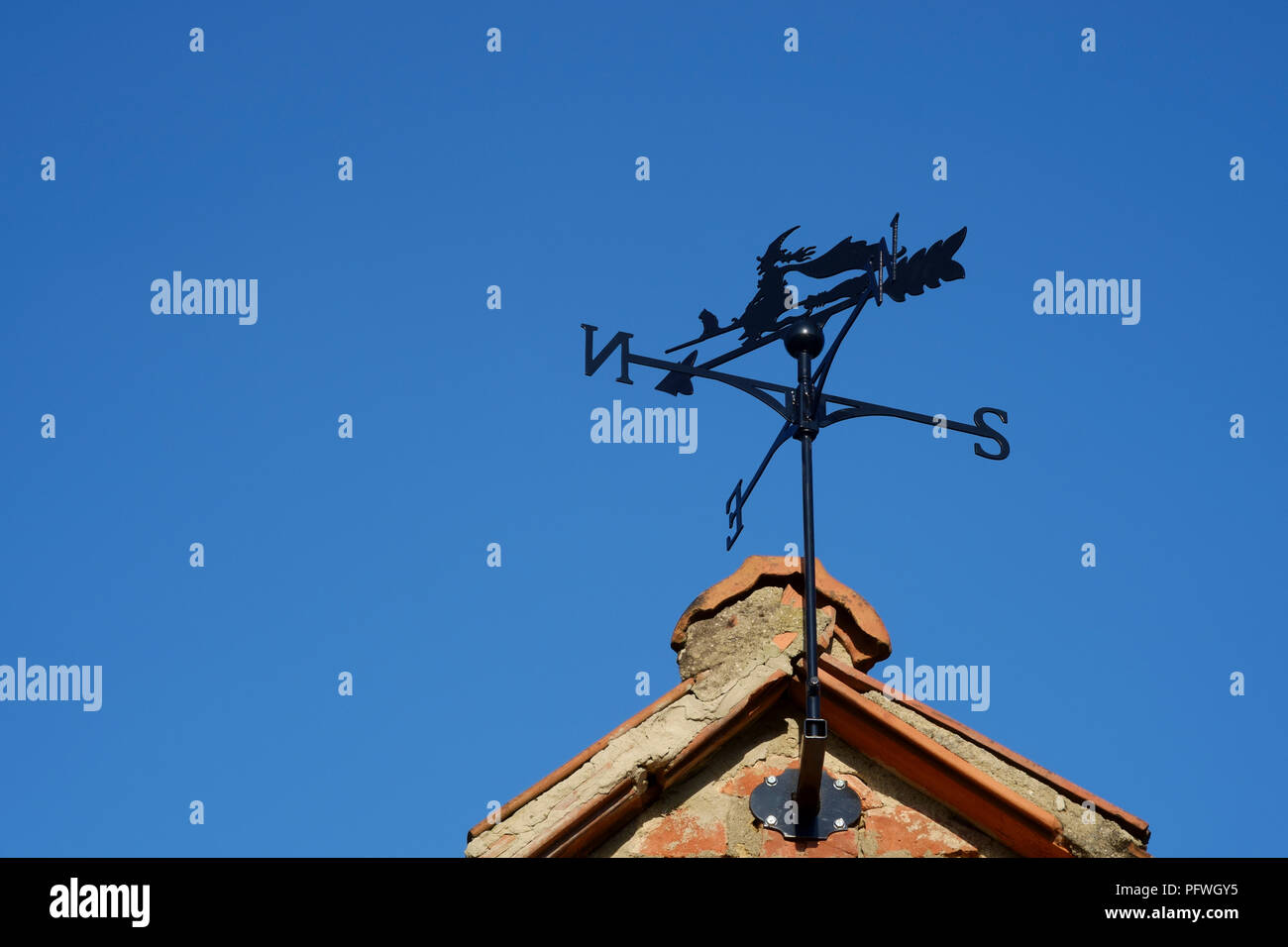 weather vane designed as a witch with black cat on a