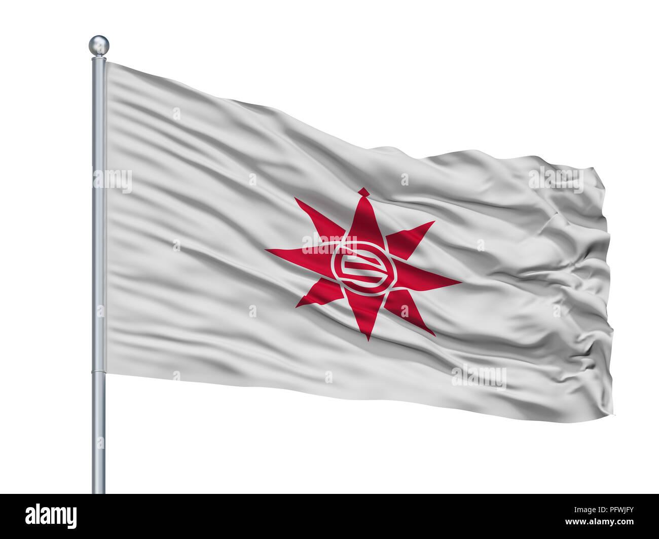 Yokosuka City Flag On Flagpole, Japan, Kanagawa Prefecture, Isolated On White Background - Stock Image