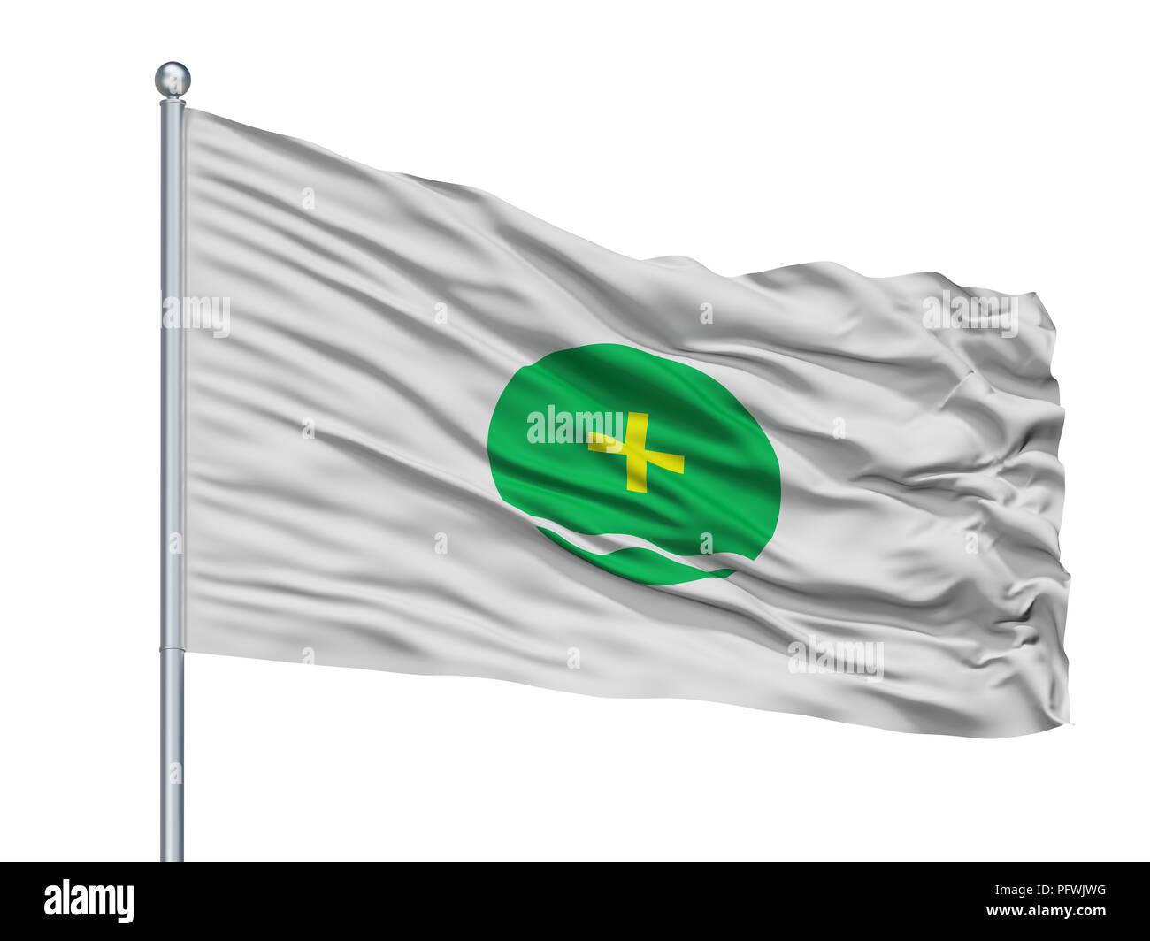 Toluca City Flag On Flagpole, Mexico, Isolated On White Background - Stock Image
