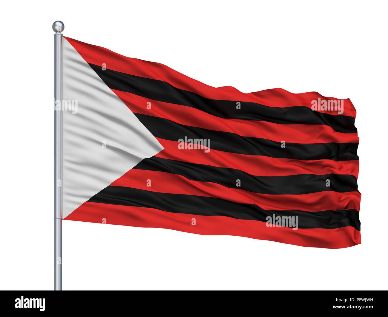 Zapopan City Flag On Flagpole, Mexico, Isolated On White Background - Stock Image