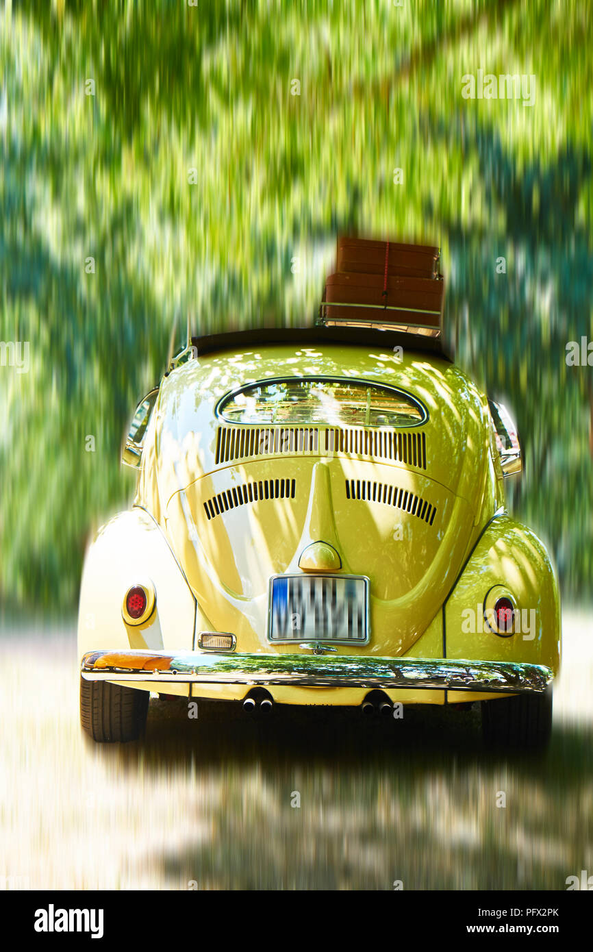 VW Beetle,1957 in motion - Stock Image