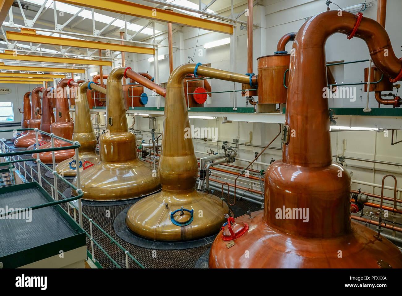 Whiskey stills at the Glen Grant distillery in the highlands, Scotland - Stock Image