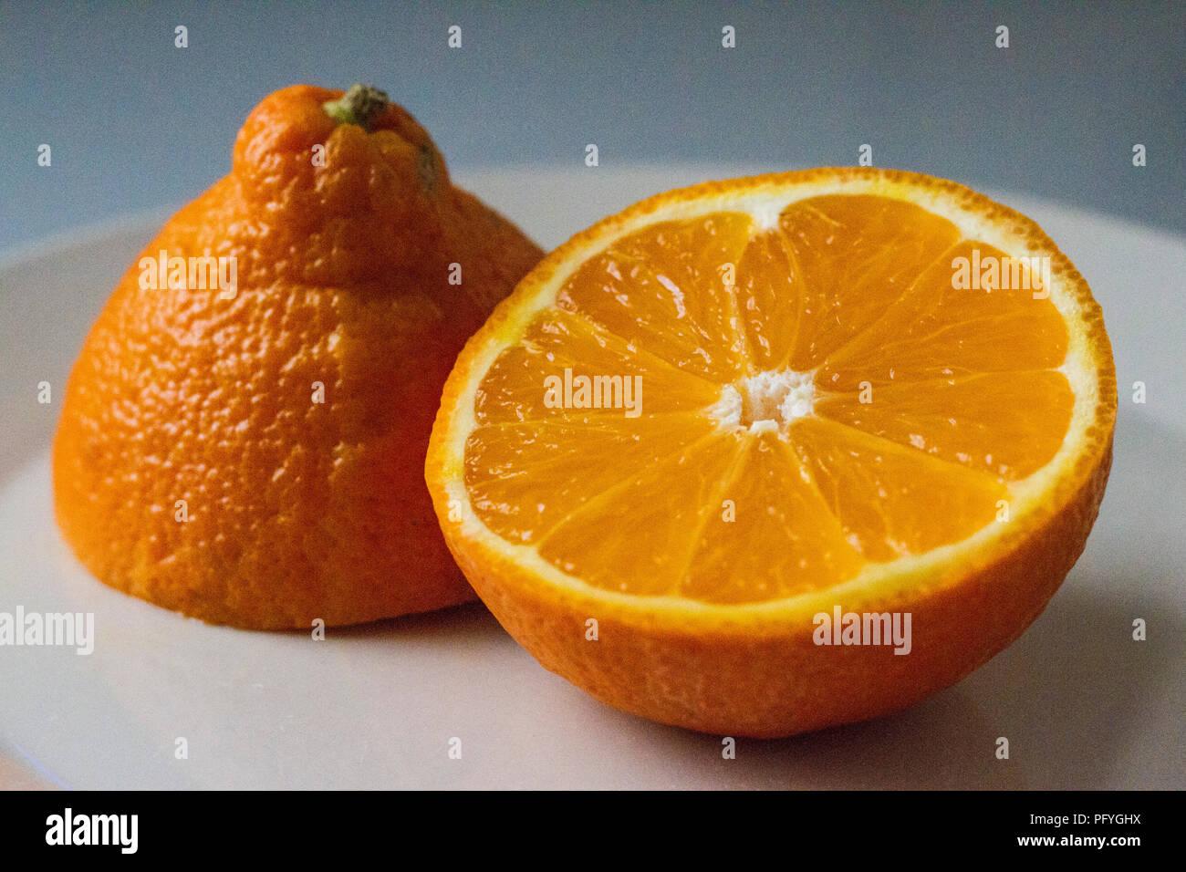 Mineola orange cut in half - Stock Image