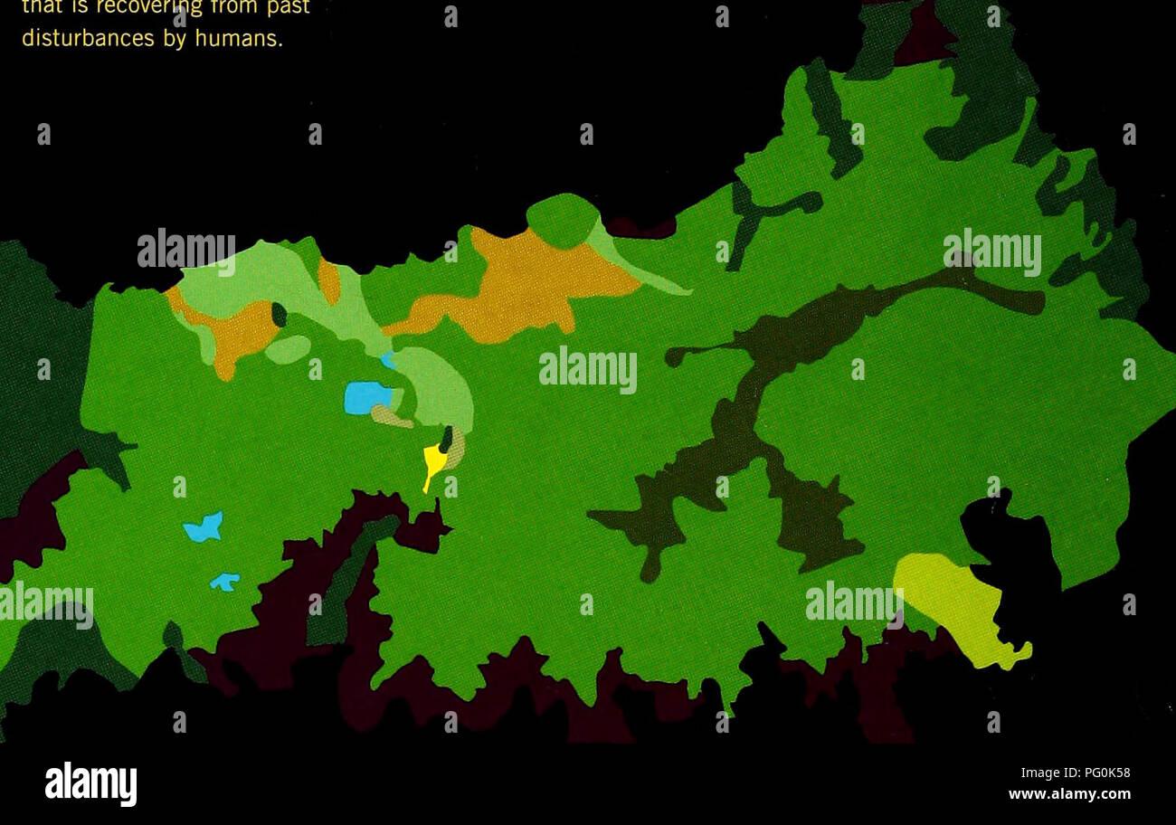 . Cuba : Parque Nacional la Bayamesa. Natural history; National parks and reserves; Ecological assessment (Biology); Wildlife conservation. Vegetacion del Parque Nacional La Bayamesa/ Vegetation of La Bayamesa National Park FIG.2 La mayor parte del Parque esta cubierto por pluvisilva montana y bosque nublado, pero contiene grandes areas de vegetacion antropica que se esta recuperando de las intervenciones humanas del pasado./ Most of the Park is covered by mountain rainforest and cloud forest, but large areas have anthropogenic vegetation that is recovering from past disturbances by humans.. K - Stock Image