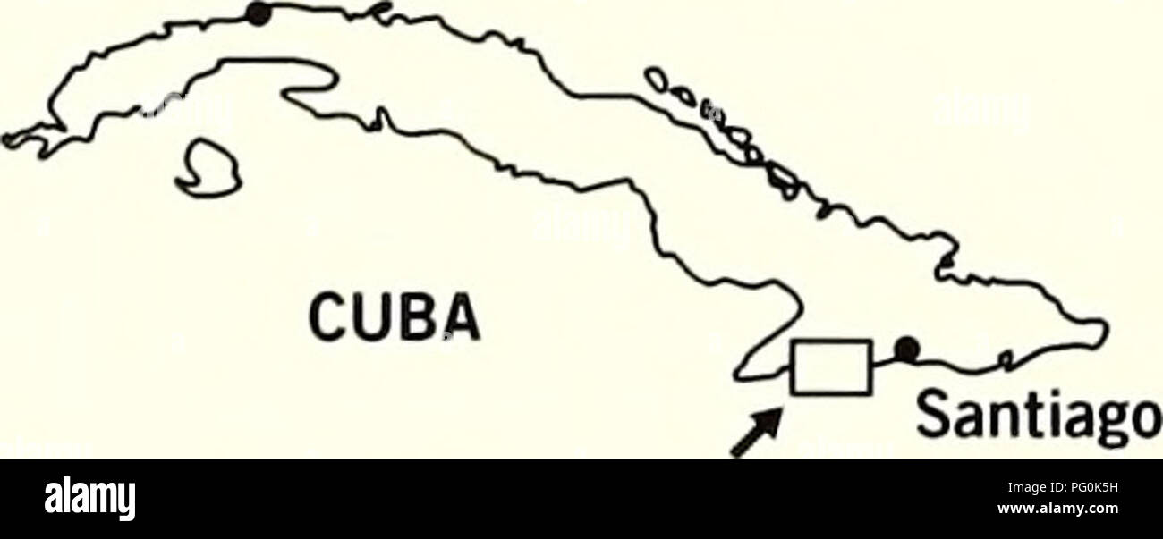 Cuba   Parque Nacional la Bayamesa. Natural history  National parks and  reserves  . 3a149145fa4