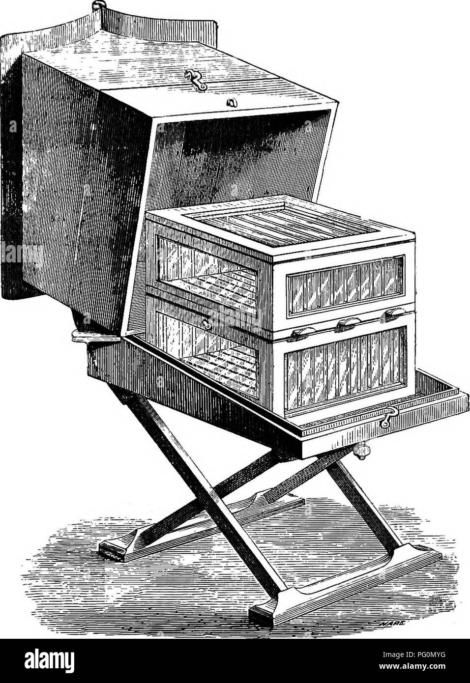". The honey-bee; its nature, homes and products. Bees. HIVES. 163 into a frame or ""crate,"" so that they may con- veniently be placed upon, or removed from, the top. Fig. 56.—Glass Frame Hive, with Super. of a hive. If kept properly warm, and well pro- tected by their cover, not only do the bees, when needing room for storage, readily take to them, but M 2. Please note that these images are extracted from scanned page images that may have been digitally enhanced for readability - coloration and appearance of these illustrations may not perfectly resemble the original work.. Harris, Wi - Stock Image"