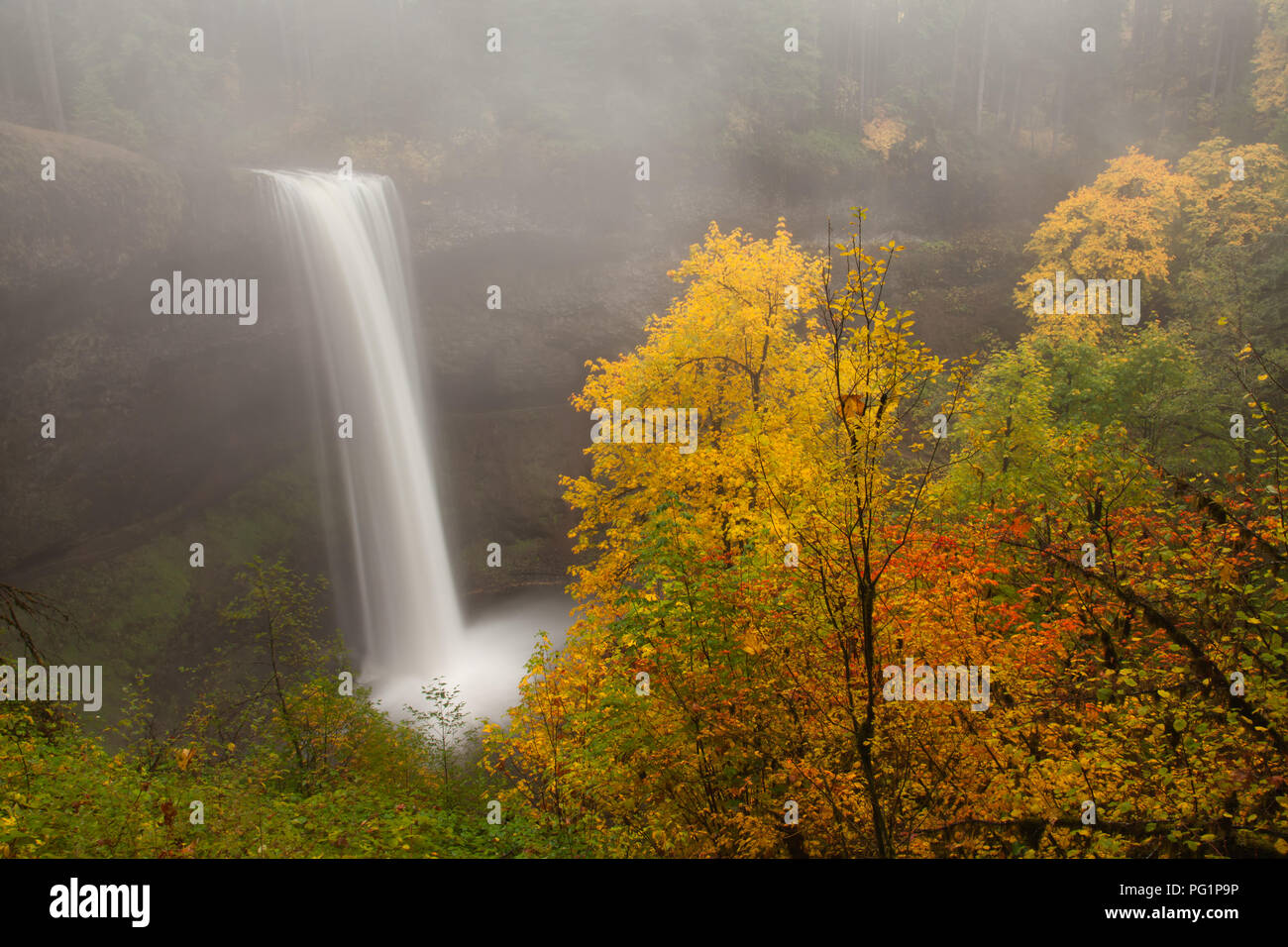 Misty South Falls in autumn in Silver Falls State Park in Oregon Stock Photo