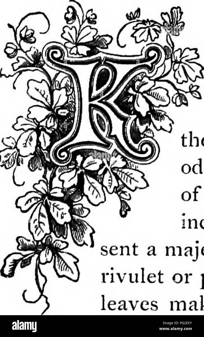 . The floral kingdom : its history, sentiment and poetry : A dictionary of more than three hundred plants, with the genera and families to which they belong, and the language of each illustrated with appropriate gems to poetry . Flower language; Flowers in literature. have many deep angles, with curious swellings with each set of spines; the Epiphyllums have flat leaves without spines, producing flpwers at their margins; Melocactus is the genus familiarly called Turk's Cap; and the Mamillarias are distinguished by their numerous tubercles or small, rounded projections. All the Cactaceae will g - Stock Image