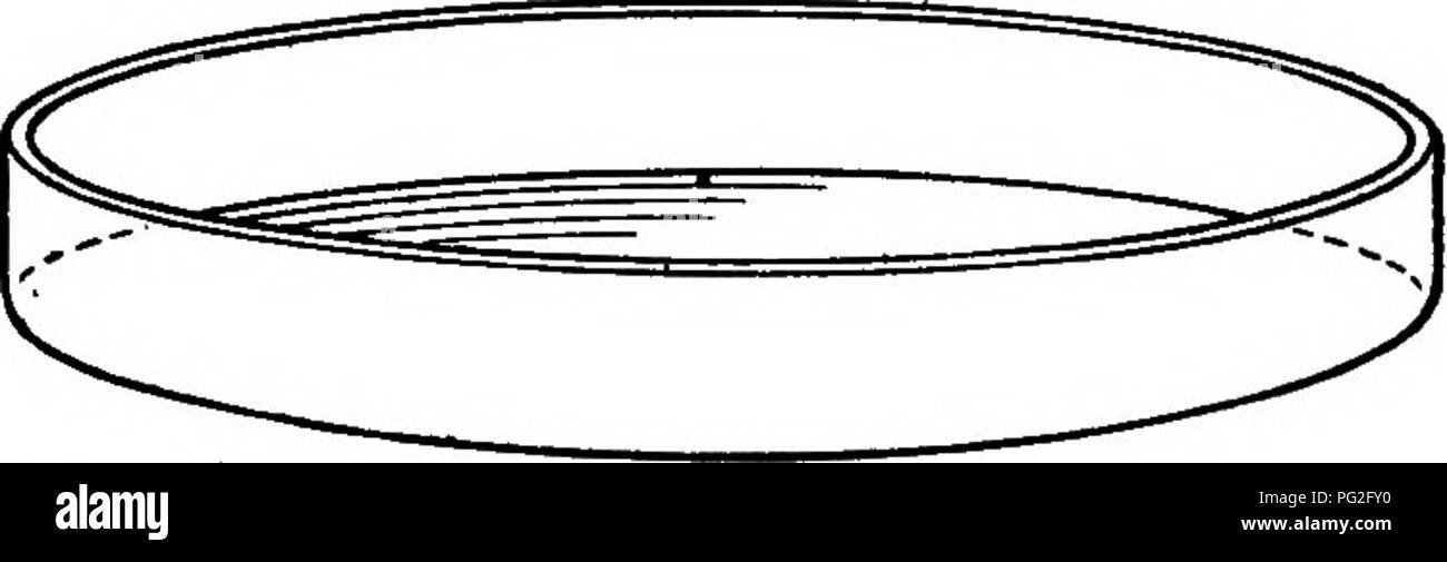 Petri Dish Black And White Stock Photos Images Alamy