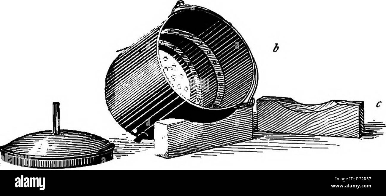 . Laboratory work in bacteriology. Bacteriology. Fig. 26. The author's steam sterilizer, a—An ordinary Hofmann's iron water-bath, ^18 cm. in diameter; d—Copper sterilizer; c—Support blocks. The copper pail is filled with the gelatin tubes, and is placed on the water-bath, in which the water should be actively boiling. In from five to seven minutes steam will issue rapidly, from the tube in the cover, showing- that the temperature in the interior has reached 100°. The steam- ing is then continued for an additional 15 minutes. This process is now repeated, on each of the following two days. By m Stock Photo
