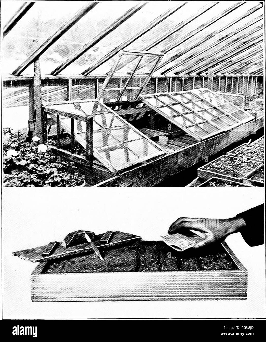 """. Around the year in the garden, a seasonable guide and reminder for work with vegetables, fruits, and flowers, and under glass. Gardening; Vegetable gardening. Plate i.—If you have only a small greenhouse with no """"warm section"""" here is a way of rigging up a frame in which to start things requiring a higher temperature than the house affords,—such as cucumbers, melons and tender flowers. {Lower) This shows the method of preparing a flat for the sowing of fine seeds; if they are very small, it is best to distribute them di- rect from the packet, by tapping it gently with the finger. A - Stock Image"""