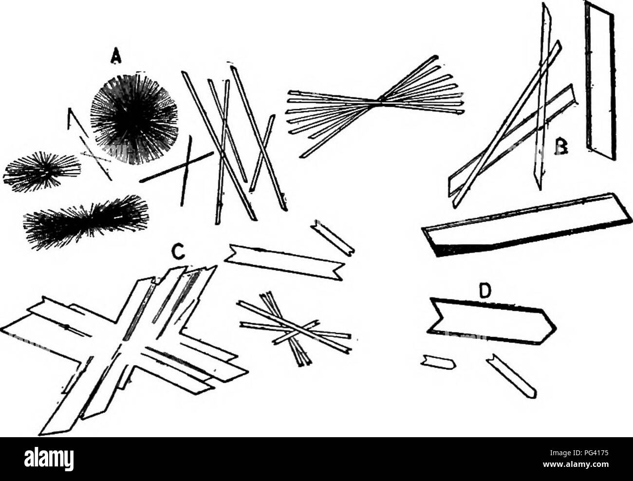 . Elements of applied microscopy. A text-book for beginners. Microscopy. FiG. 54.—Crystals of C-esidm Alum. (After Lehmann.) phate. From dilute acid solutions slender monoclinic prisms of the compound (CaS04+ 2H2O) crystallize out. Fig. 55.—Crystals of Calcium Sulphate. (After Lehmann.) (Fig. 55), showing numerous double twins, as at C, and in presence of strong acids, masses of minute needle- like crystals, as at .4.. Please note that these images are extracted from scanned page images that may have been digitally enhanced for readability - coloration and appearance of these illustrations may - Stock Image