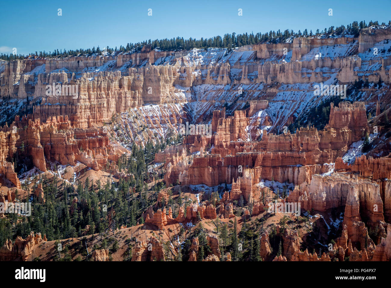 Red Rocks Hoodoos in Bryce Point at Bryce Canyon National Park, Utah - Stock Image
