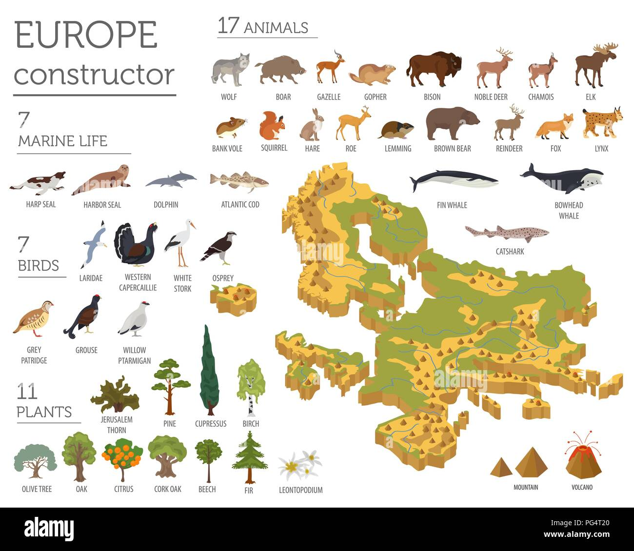 Isometric 3d European flora and fauna map constructor elements. Animals, birds and sea life isolated on white big set. Build your own geography infogr - Stock Image