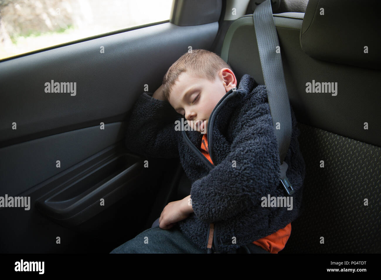 cute small child sleeping peacefully inside car wearing seat safety belt - Stock Image