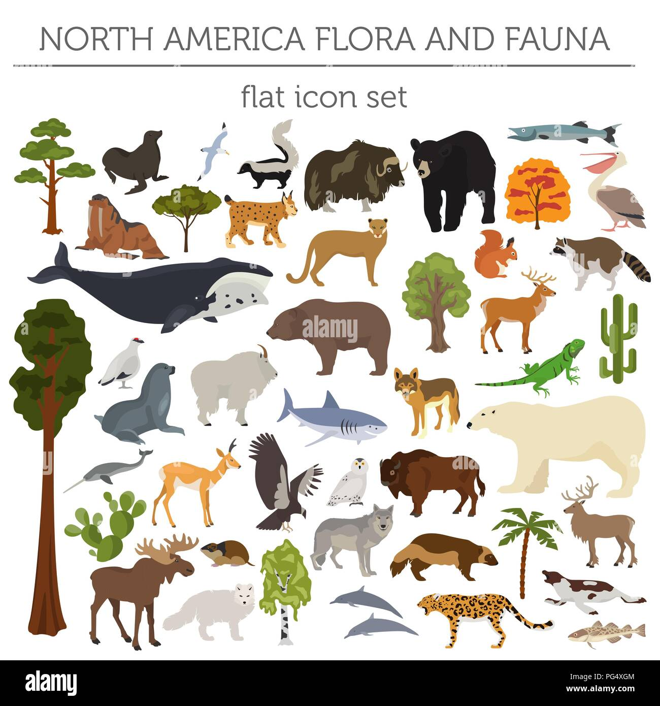 North America flora and fauna flat elements. Animals, birds and sea life big set. Build your geography infographics collection. Vector illustration - Stock Vector