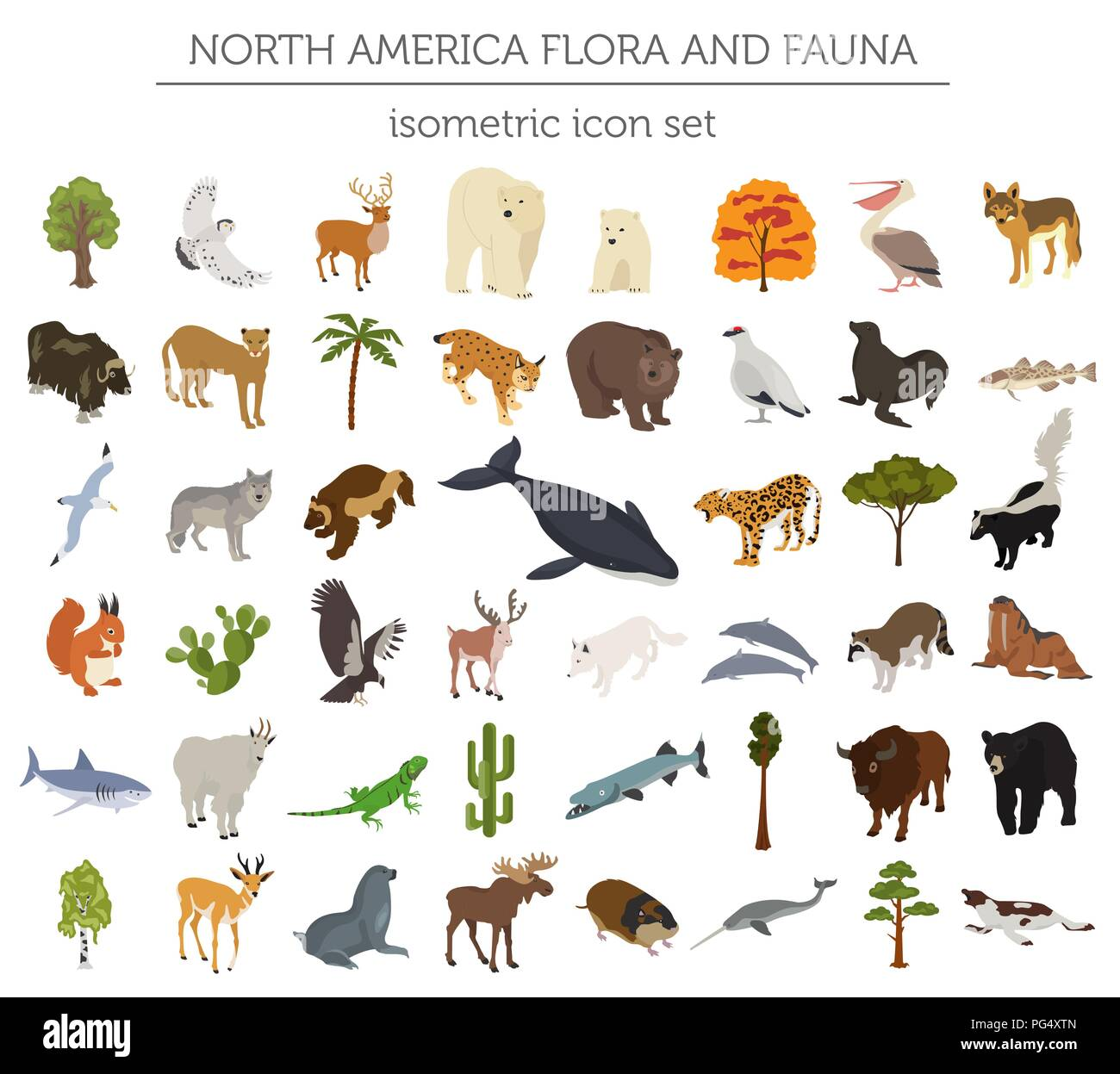 Isometric 3d North America flora and fauna elements. Animals, birds and sea life. Build your own geography infographics collection. Vector illustratio - Stock Vector