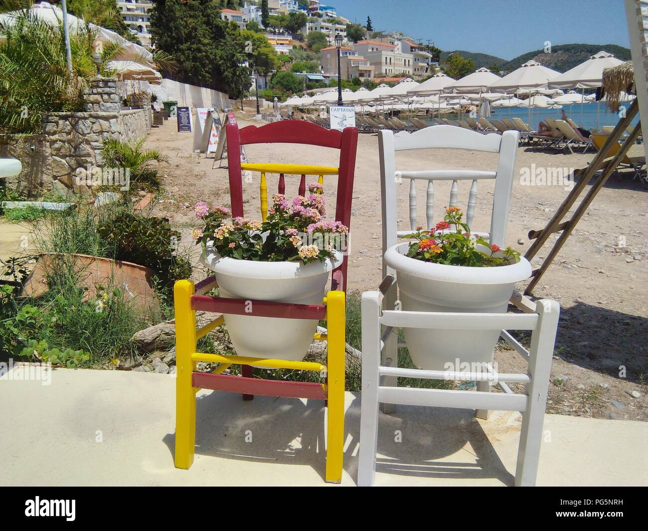 Greece, the atmospheric island of Poros.  Two old chairs painted and recycled as plant pot holders in a quirky way - Stock Image