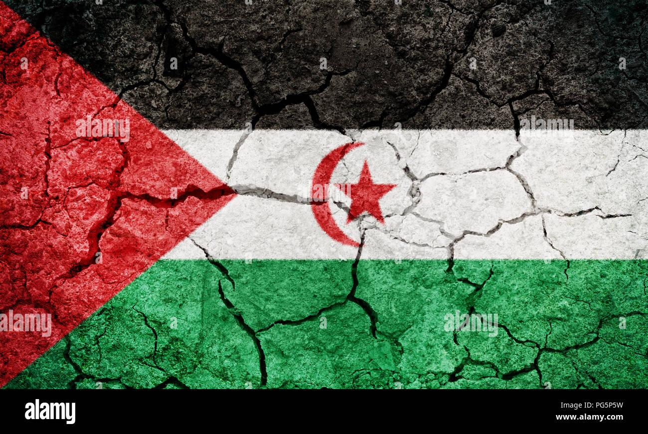 Sahrawi Arab Democratic Republic flag on dry earth ground texture background - Stock Image