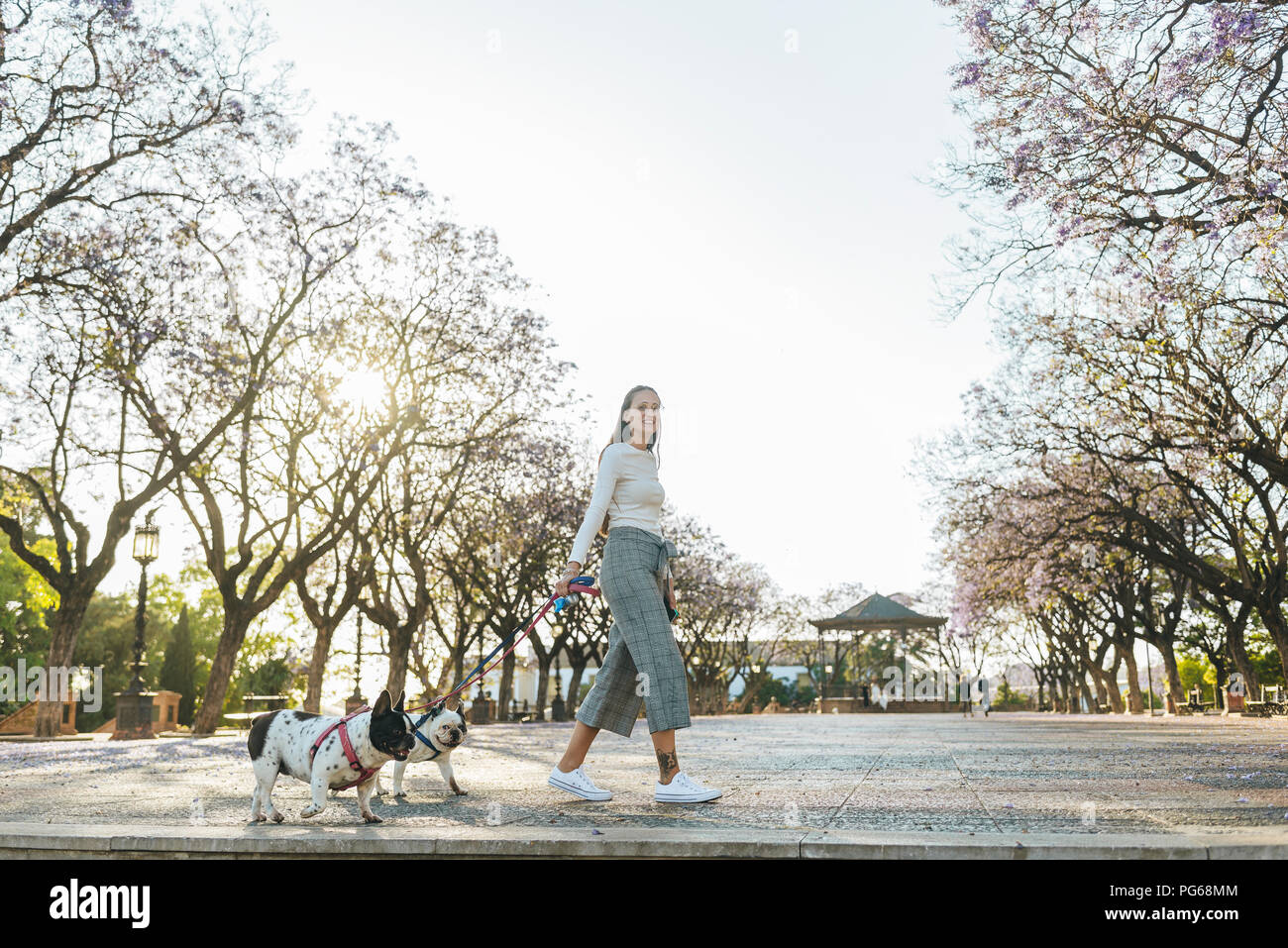 Spain, Andalusia, Jerez de la Frontera, Woman walking with two dogs on square - Stock Image