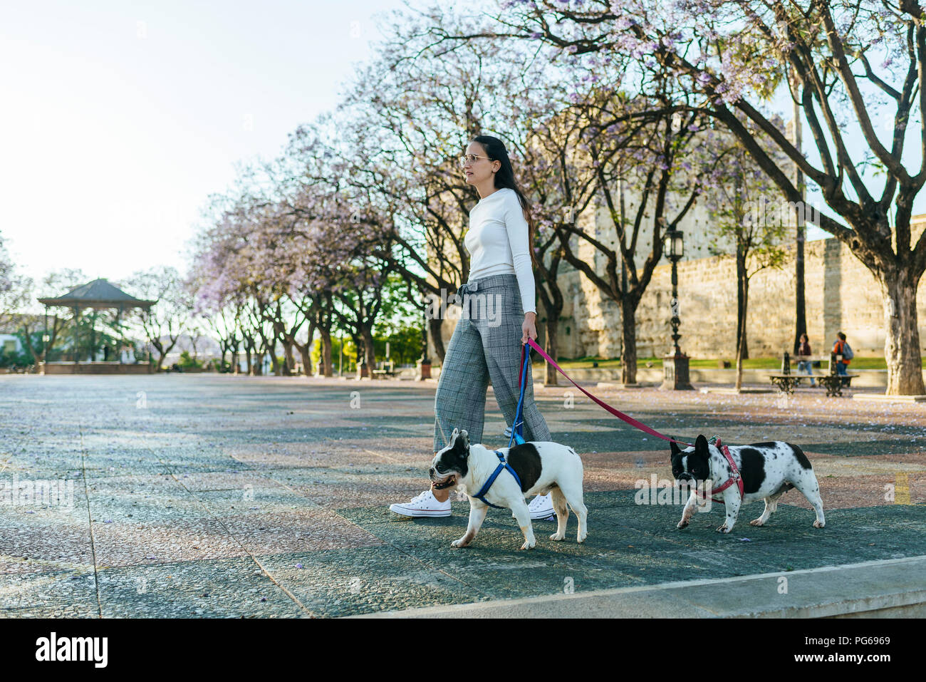 Spain, Andalusia, Jerez de la Frontera, Woman walking with two dogs on square Stock Photo