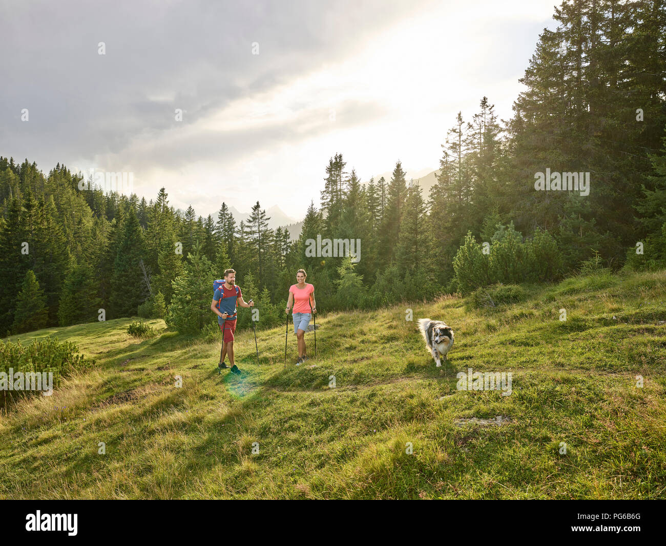 Austria, Tyrol, Mieming, couple with dog hiking in alpine scenery - Stock Image