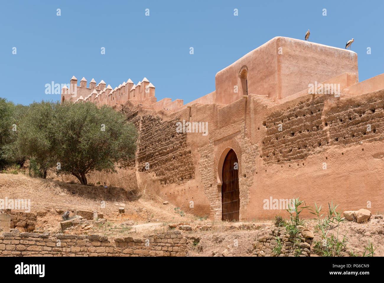 Walls of Chellah ancient necropolis and Roman settlement in Rabat, Morocco - Stock Image