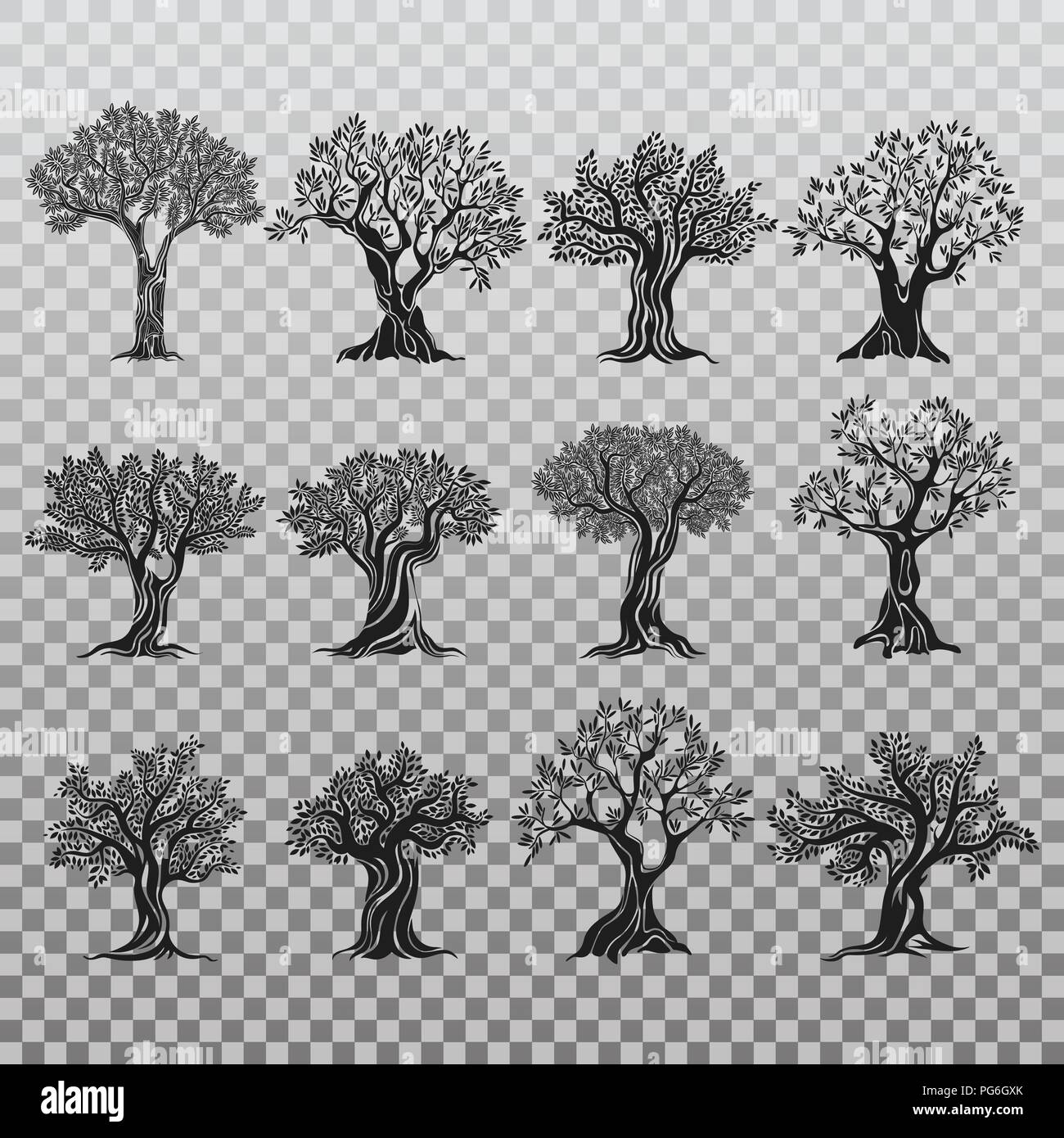 Set of isolated olive trees icons. Ancient mediterranean greek plant for fruit food and oil, flora with foliage and berry. Agriculture logo and vegetarian, healthy nutrition, drink and grove banner - Stock Vector